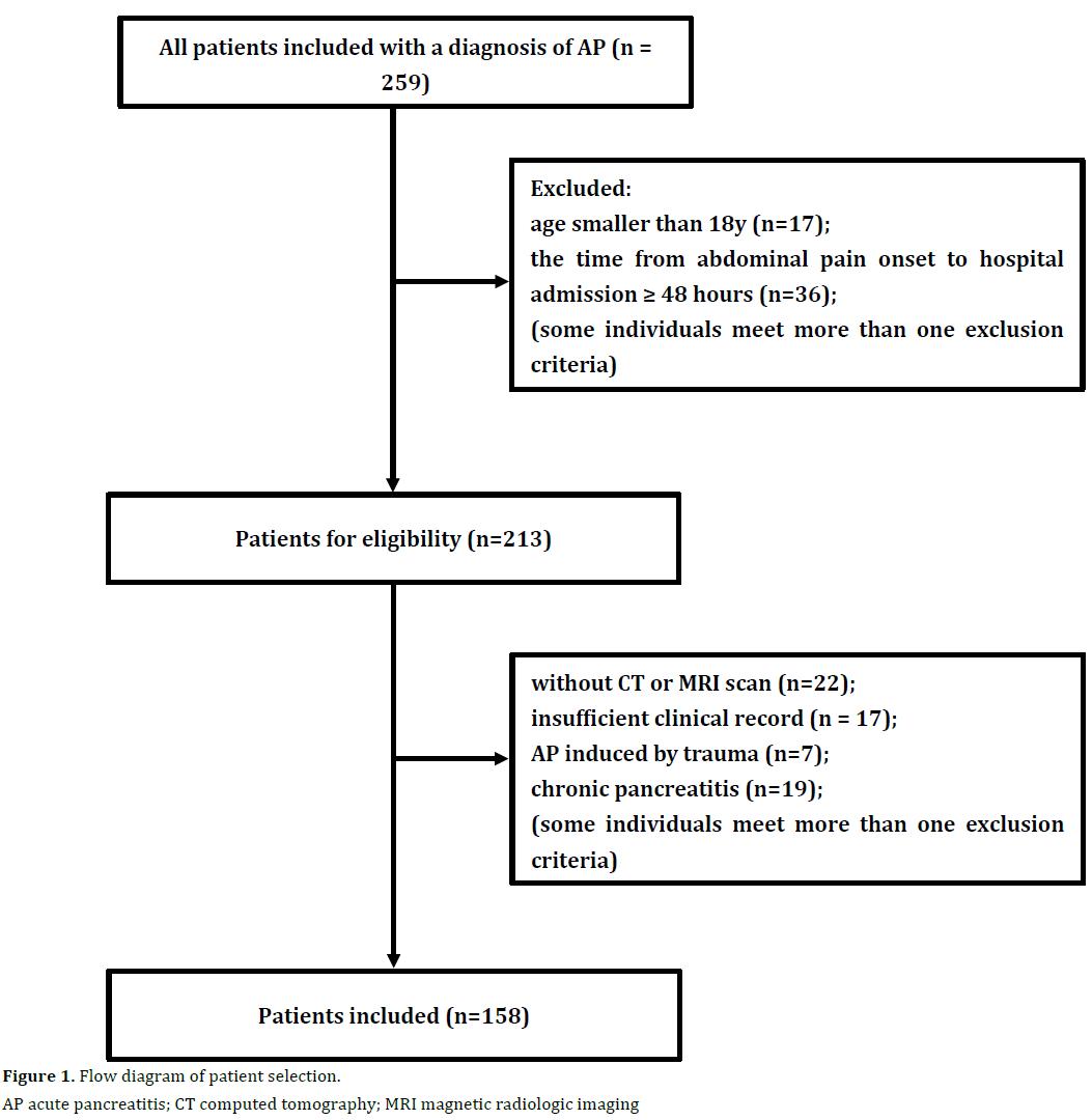 pancreas-flow-diagram-patient