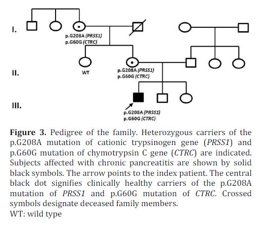 pancreas-pedigree-heterozygous-carriers