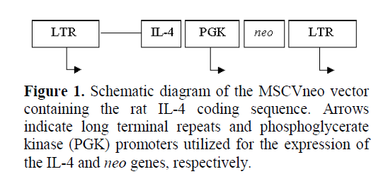 pancreas-promoters-utilized-expression